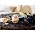 Pinus Cembra Fragrance Globe - Natures Design